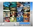 Geovision 32 Channel NVR Software License Third Party IP Cameras Logo
